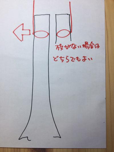 Img_6867
